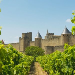 medieval town of carcassonne and vineyards
